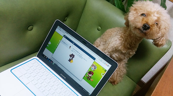 Chromebookユーザーに朗報!