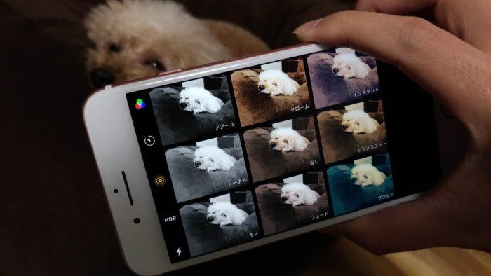 iPhone7Plus エフェクト撮影