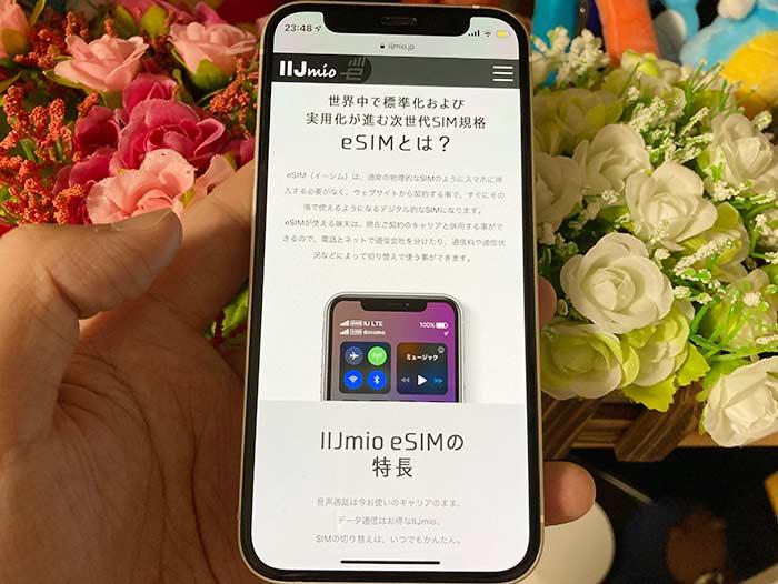 eSIM(内蔵SIM)