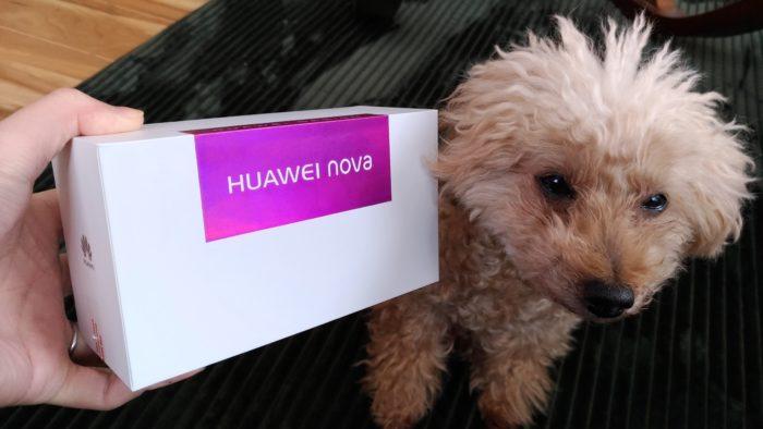 HUAWEI nova 開封の儀