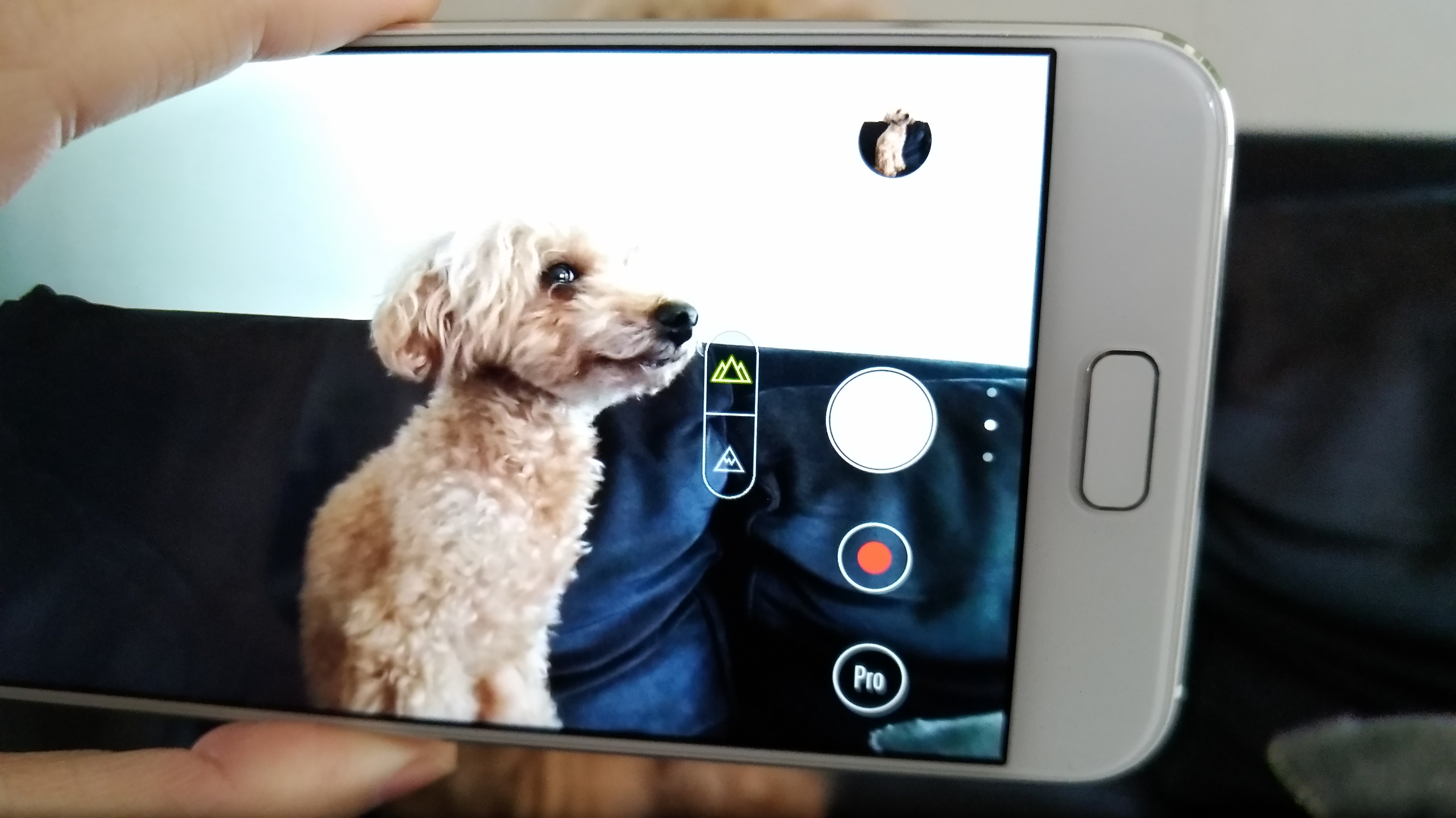 ZenFone4 広角撮影♪