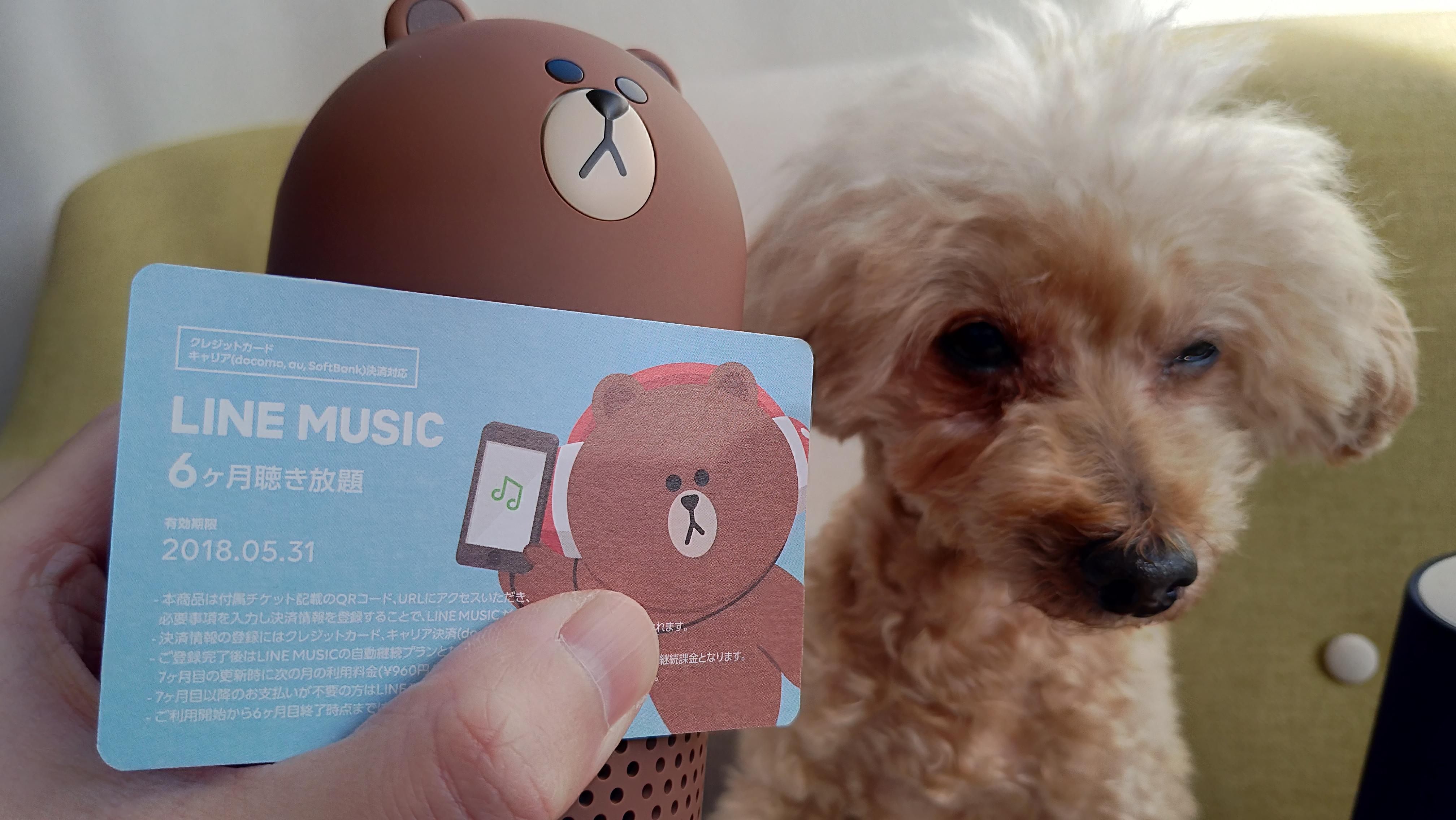 LINE MUSIC 6ヶ月聴き放題付