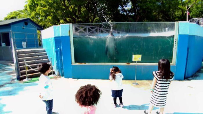 イルカに水をかけられて遊ばれる子供たち