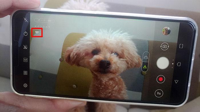 ZenFone5 ドッグ<