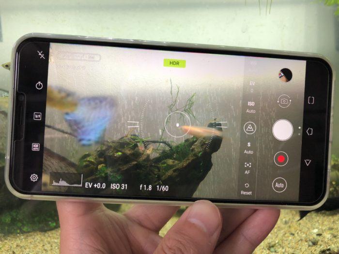 ZenFone5(ZE620KL)カメラ