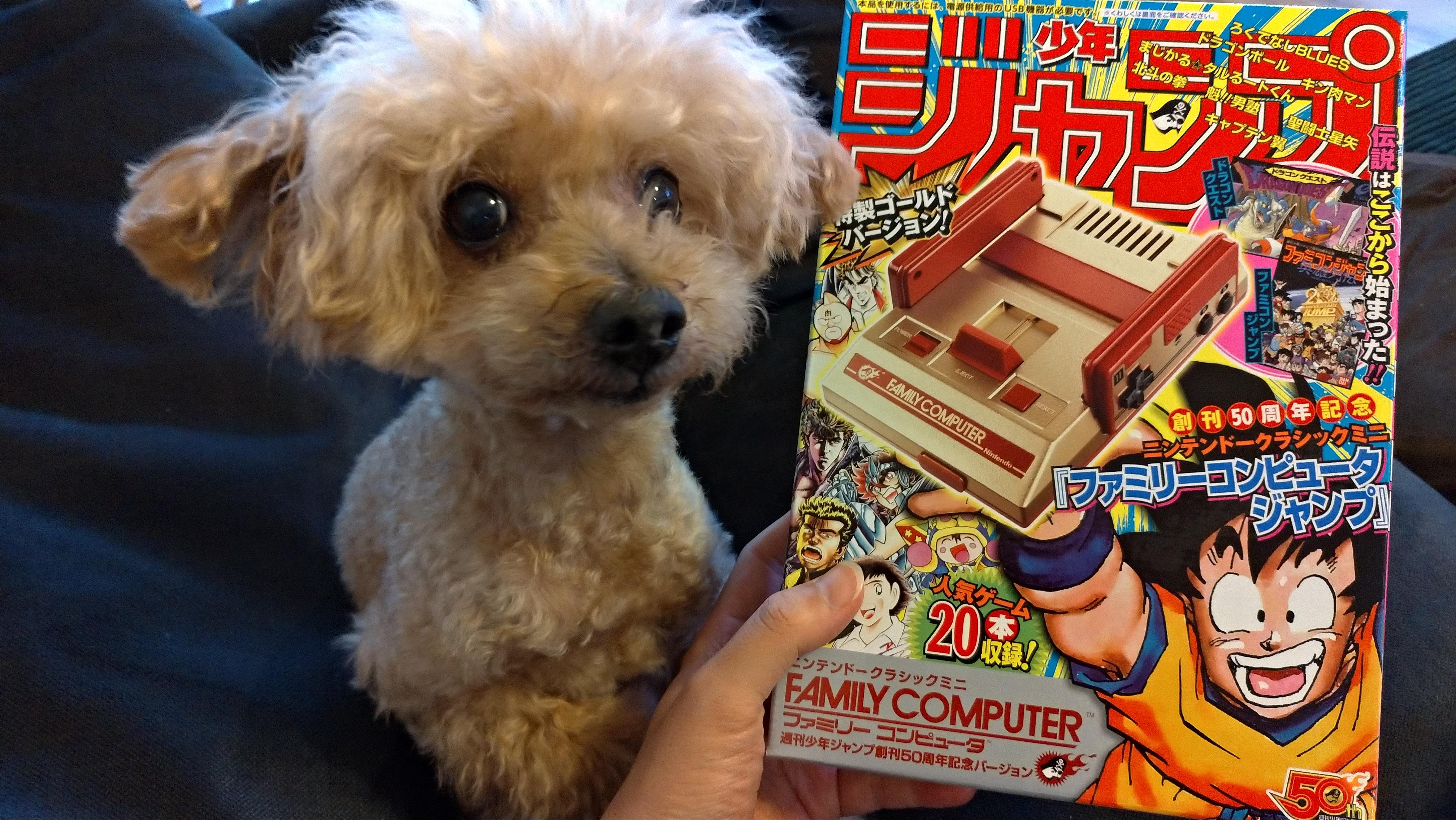 ニンテンドークラシックミニ ファミリーコンピュータ 週刊少年ジャンプ50周年記念版