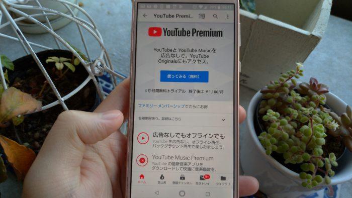 通常(無料)のYouTube