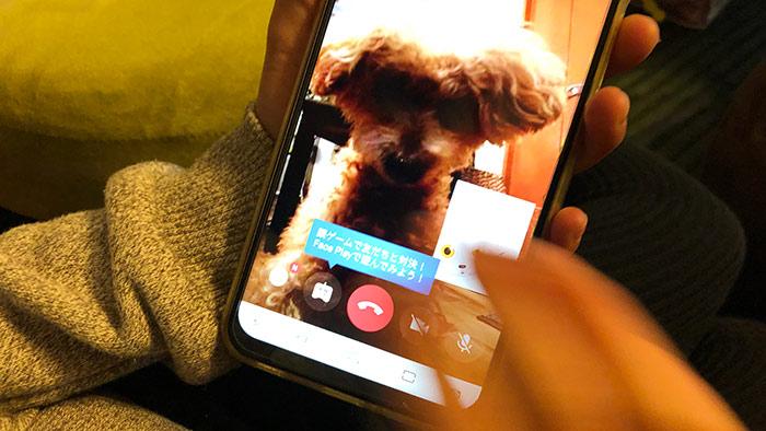 facebookのビデオ通話でZeniMoji