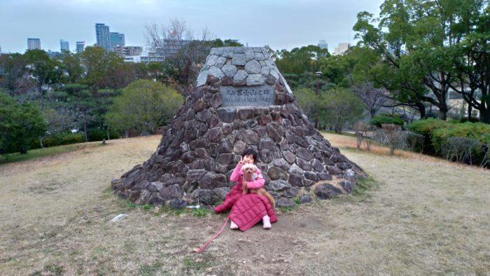 サイホーンの巣(大倉山公園 2018.12)