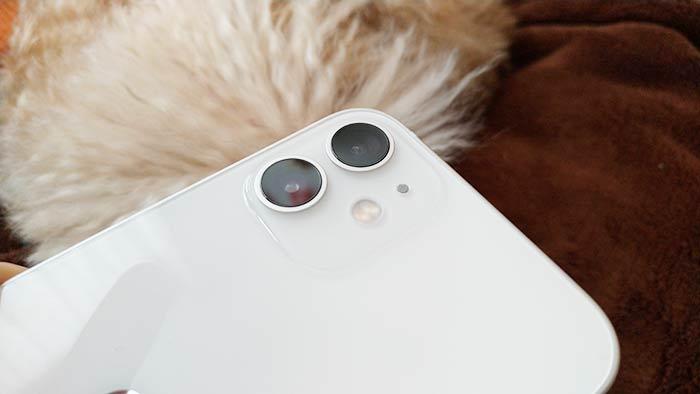 背面カメラ2基搭載
